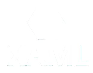 Apollo possède differentes expertises dont le XAML